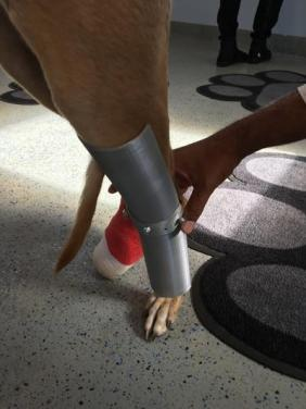plain-splint-on-leah