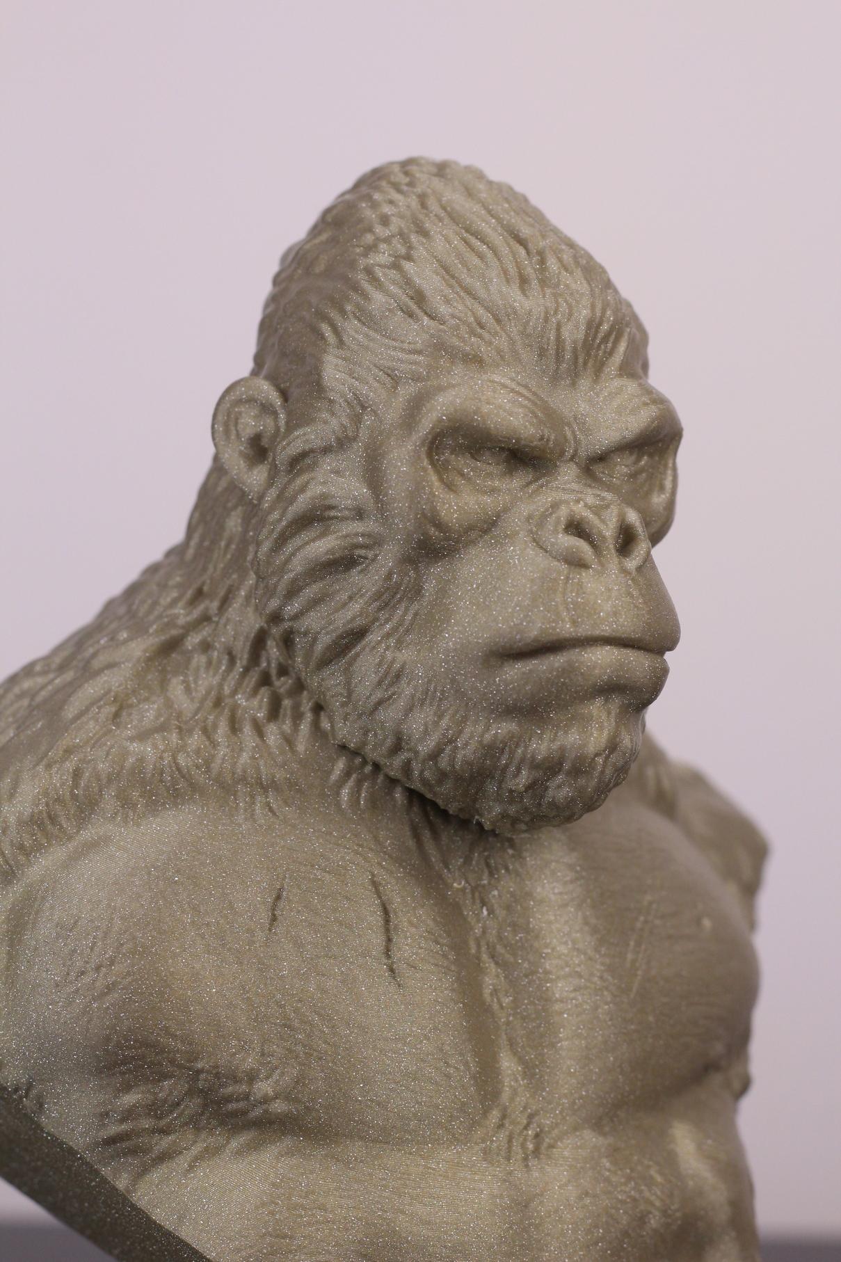 Kong-printed-on-Fysetc-Prusa-Mini-Clone-15