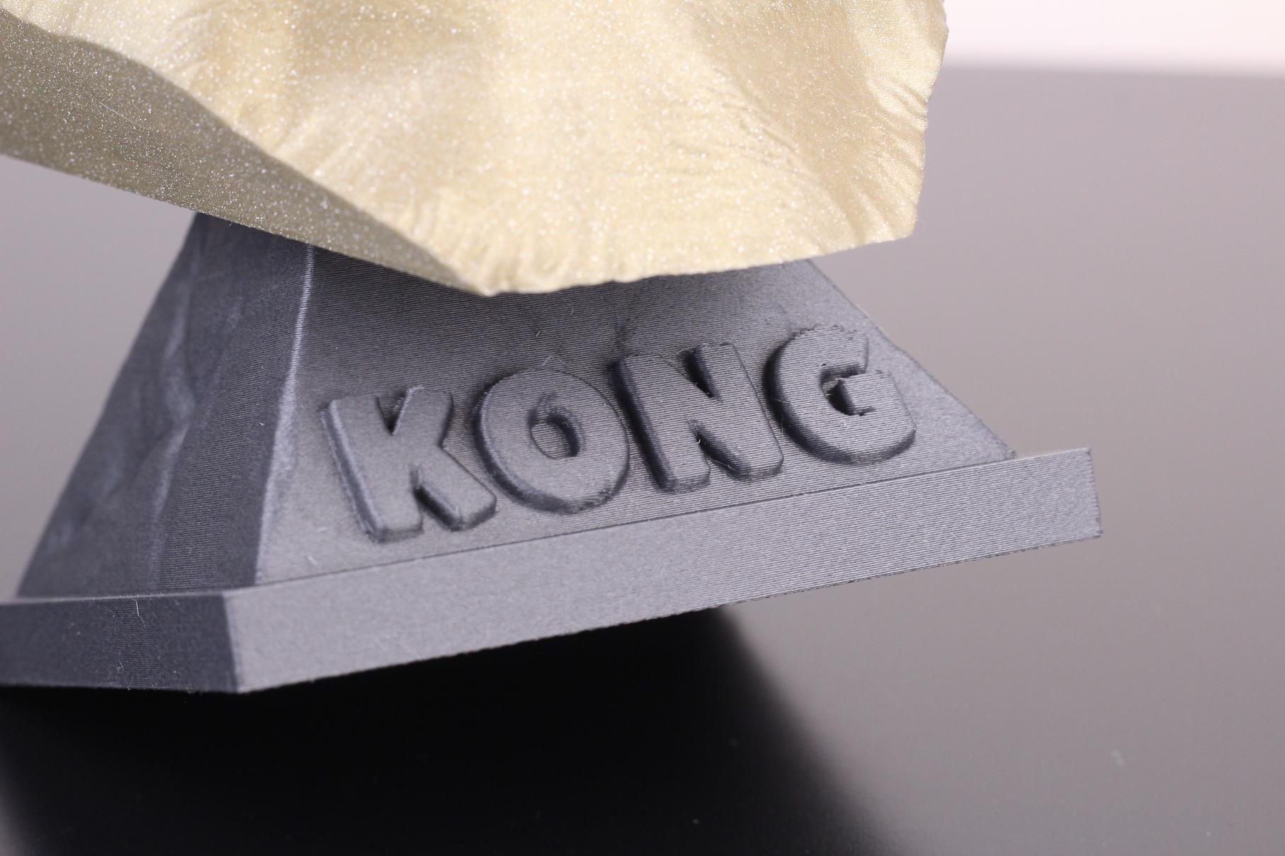 Kong-printed-on-Fysetc-Prusa-Mini-Clone-16