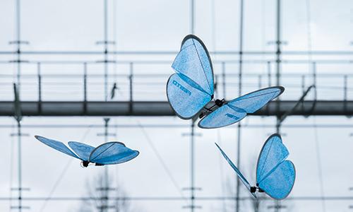 eMotionButterflies flying in formation Source: Festo