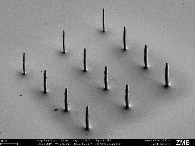 cytosurger fluidfm micro metal 3D printing
