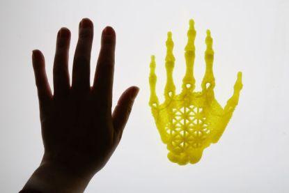 Hand Amy Karle