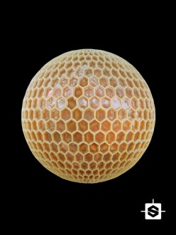 honeycomb honey bee bees hive beehive organic food