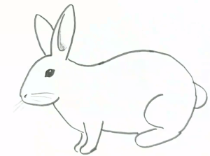 rabbit drawing easy step draw sketch face bunny awesome uncategorized learn clip coloring bryant aurora randhawa guru sstra glasses clipart