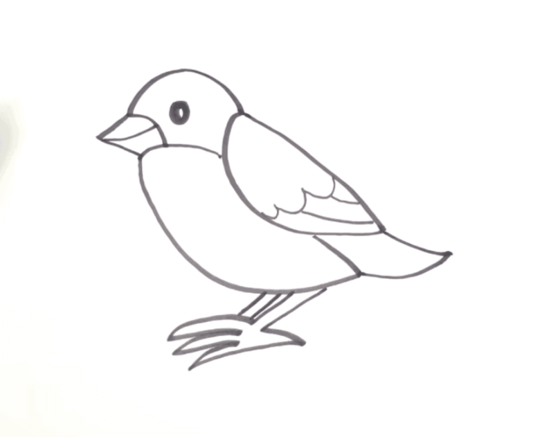 How to draw a bird easy