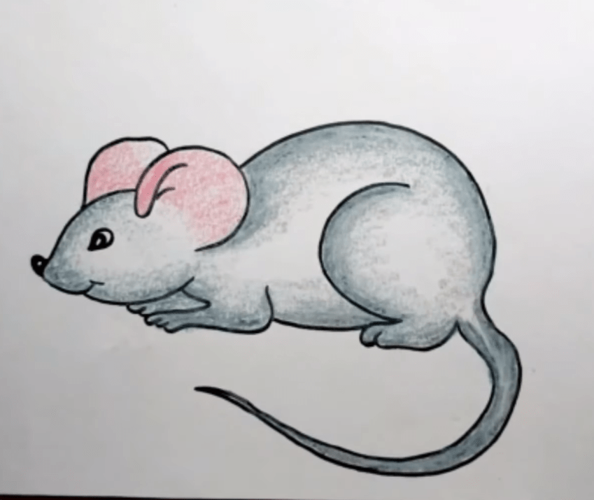 How to draw a Rodent