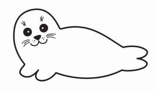 seal drawing easy