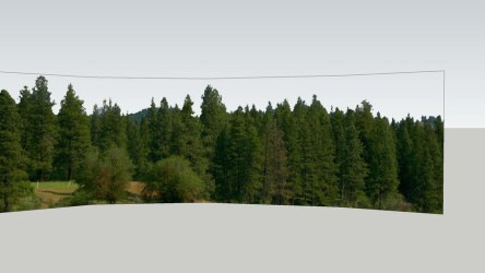 Forest background 3D Warehouse