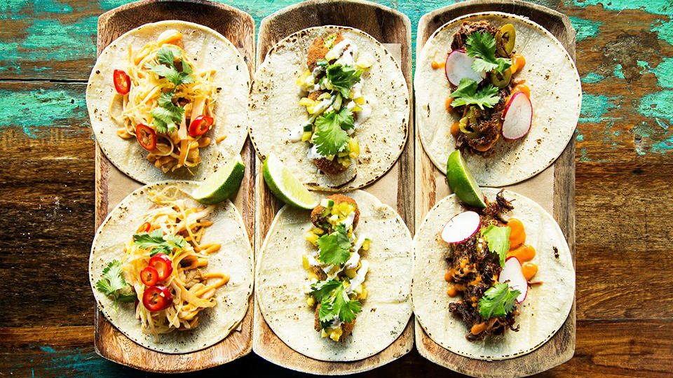 Tico Does Cinco  Boston Restaurant News and Events