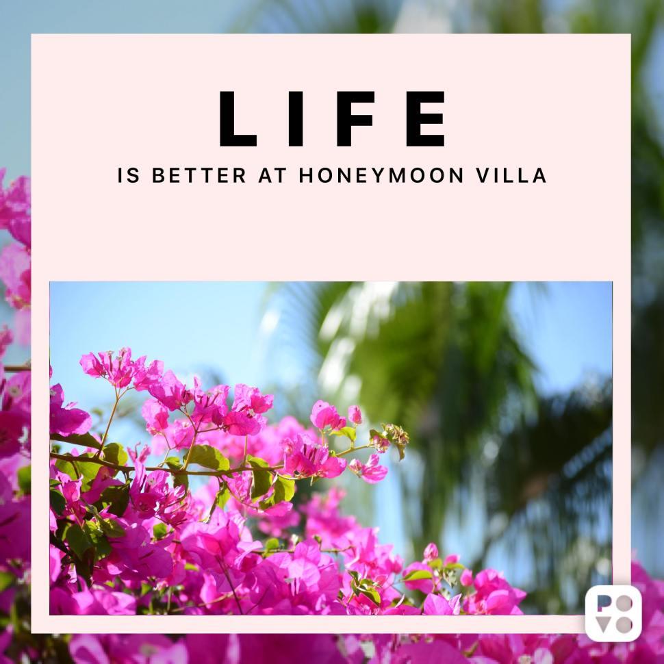 LIFE IS BETTER AT HONEYMOON VILLA