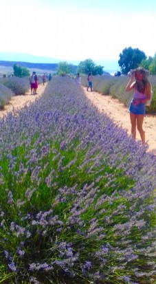 we love mahmutlar lavender field trip19