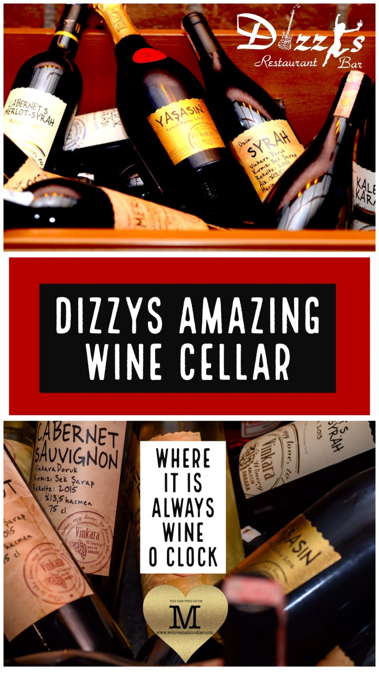 Dizzys Bar - Amazing Wine Store - We Love Mahmutlar