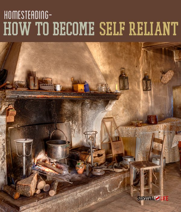 Placard | Homesteading and Sustainability: How To Become Self Reliant
