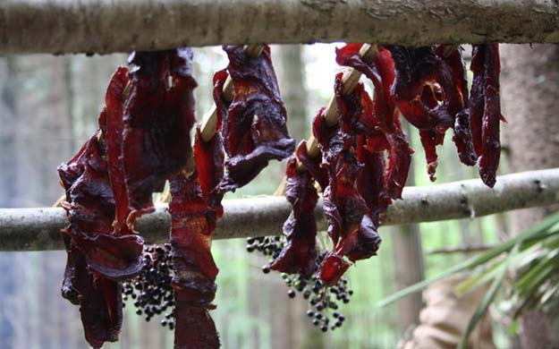 Preserving Meat | Do You Know These 25 Native American Survival Skills?