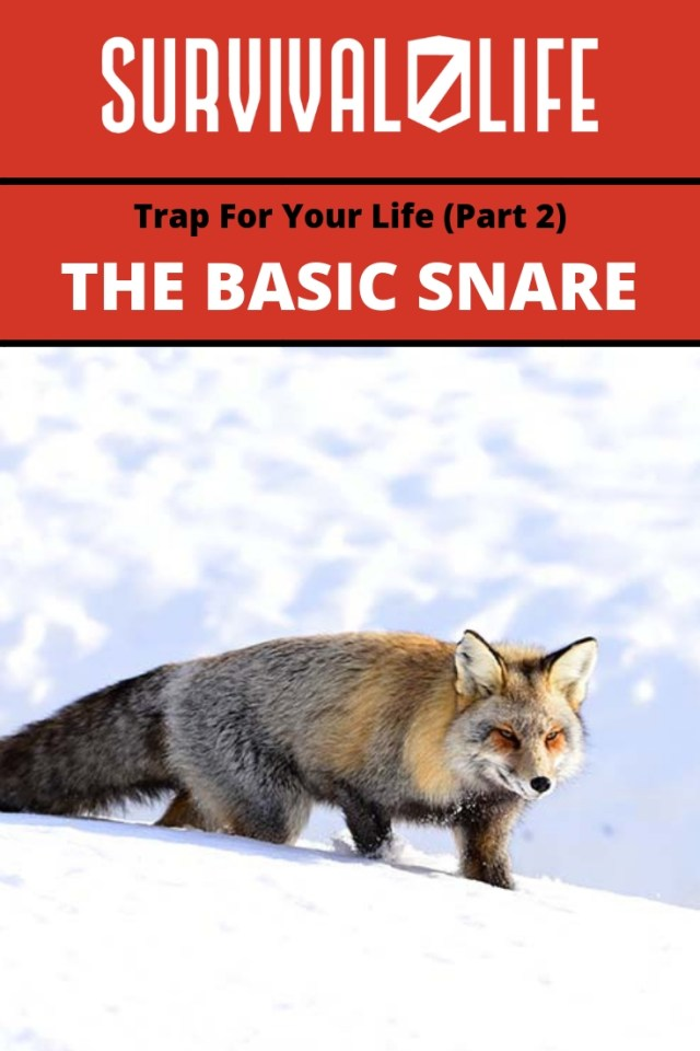 Placard | Basic Snare | The Basic Snare: Trap For Your Life (Part 2)