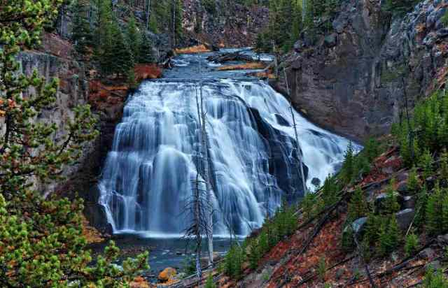Yellowstone national park falls | Yellowstone Wolves: The Return Of The Wolf To Yellowstone