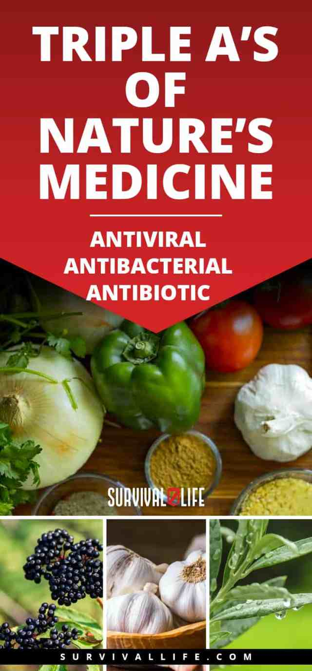 Placard | Triple A's of Nature's Medicine: Antiviral ~ Antibacterial ~ Antibiotic