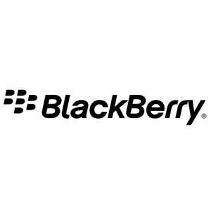 Blackberry Screen Reader For The Visually Impaired