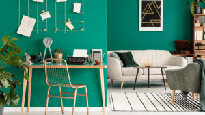 clean canva office living check calls shine