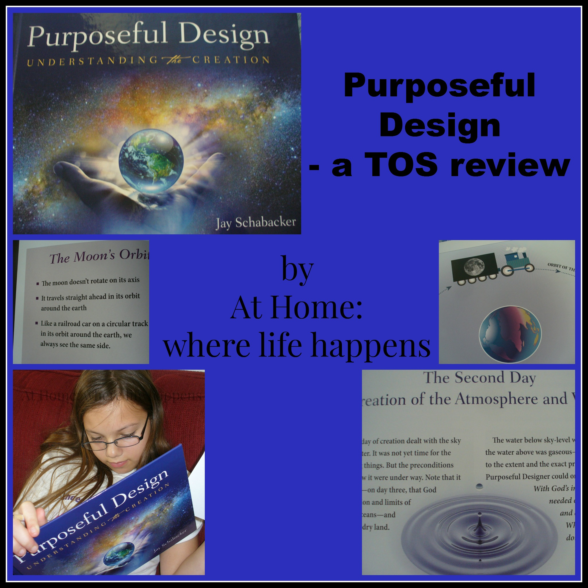 A Review: Purposeful Design