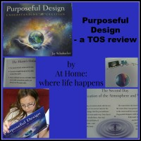 A Review: Purposeful Design | At Home