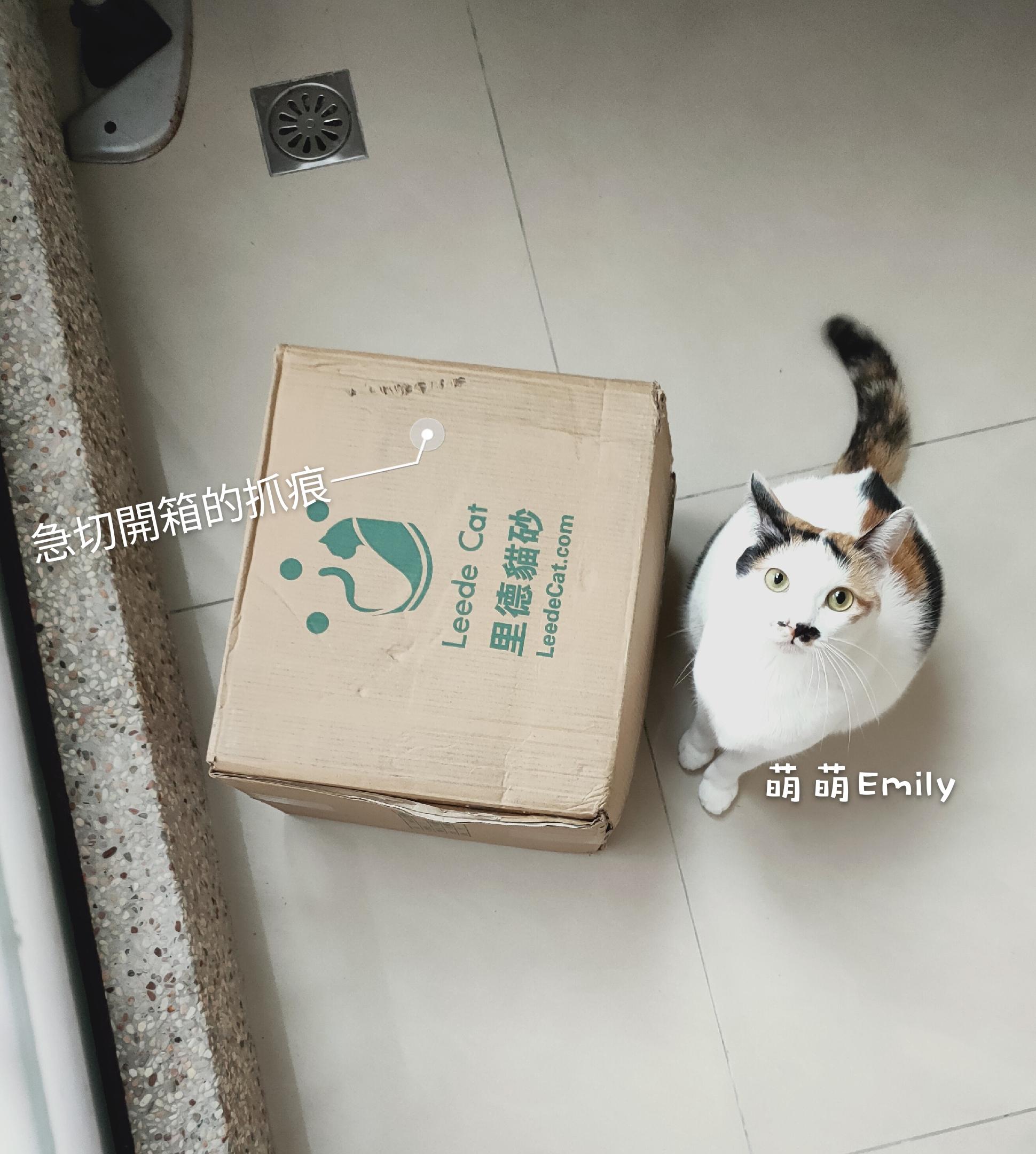 網路銷售評價紅不讓!愛貓粉絲推薦里德貓砂/淨粹礦砂 @ 鹿爾小姐 :: 痞客邦