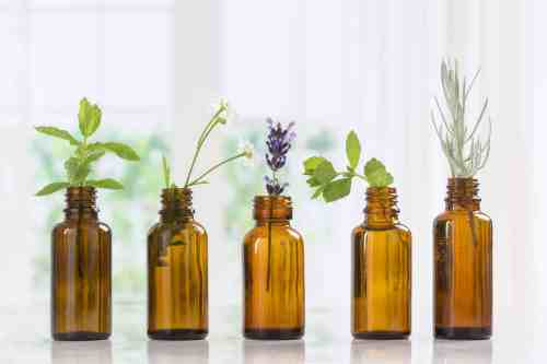 Essential oil bottles with fresh herbs to naturally remedy hot flashes