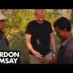 Gordon Ramsay Goes Tarantula Hunting in Cambodia