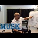 Learning Perfumery ( Part 8 ) – Musk
