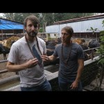 No Cow Left Behind! Rescuing Cattle with a Motorcycle in Kathmandu—Throttle Out Preview Ep. 11