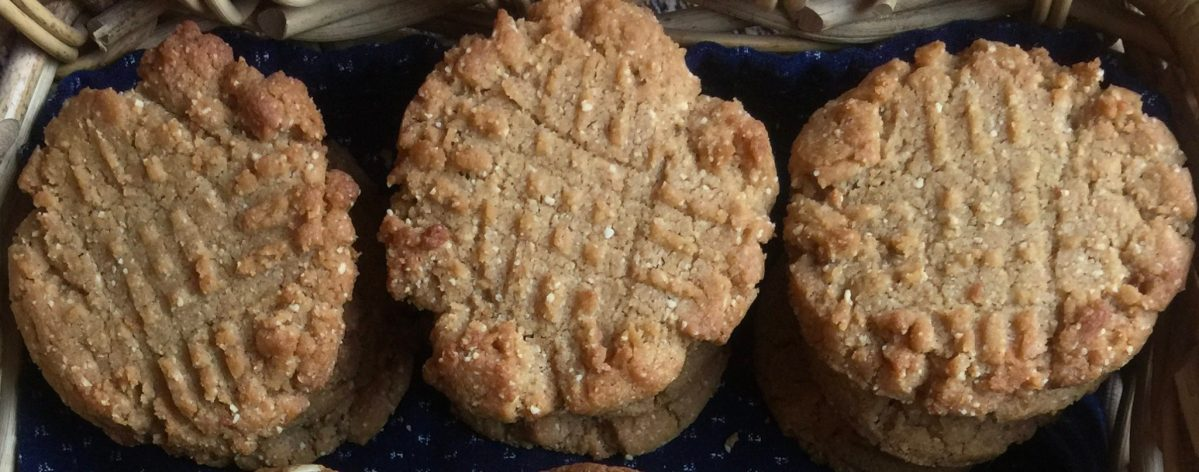 A Cautionary Tale with a Sweet Ending (Honey Roasted Peanut Butter Cookies)