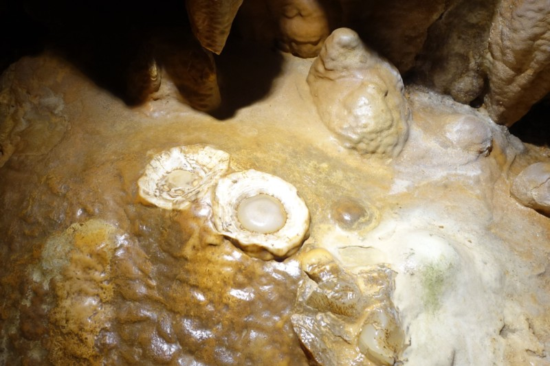 2 Tips For Visiting Luray Caverns