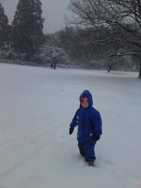 While the big ones were at Forest School we enjoyed snow in Richmond Park