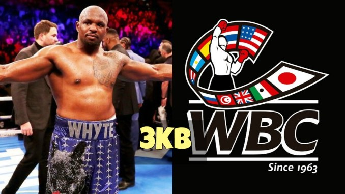 Dillian Whyte and the WBC Logo