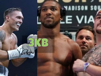 Oleksandr Usyk, Anthony Joshua vs Andy Ruiz