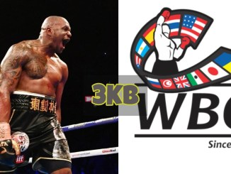 Dillian Whyte and WBC logo