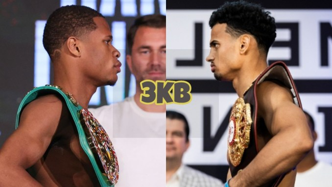 WBC lightweight champion Devin Haney, Rolando Romero