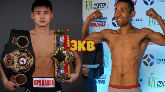 WBA junior flyweight champion Hiroto Kyoguchi, Esteban Bermudez