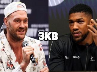 WBC heavyweight champion Tyson Fury talks into a microphone, Anthony Joshua at a post-fight conference