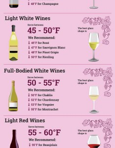 Embed this infographic also wine serving  storage temperatures rh learn winecoolerdirect