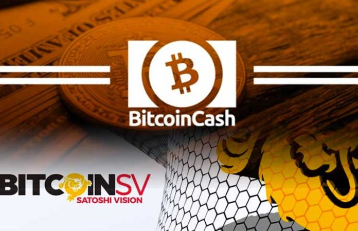Bitcoin Cash (BCH) Overtakes New Rival Bitcoin SV (BSV) After Gemini Exchange Inclusion