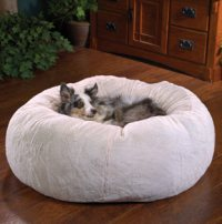 Snuggle Up! The Best Dog Beds for Your Pooch!