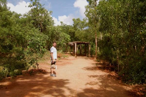 Auroville- Spiritual Eco-village Restores Woods 3