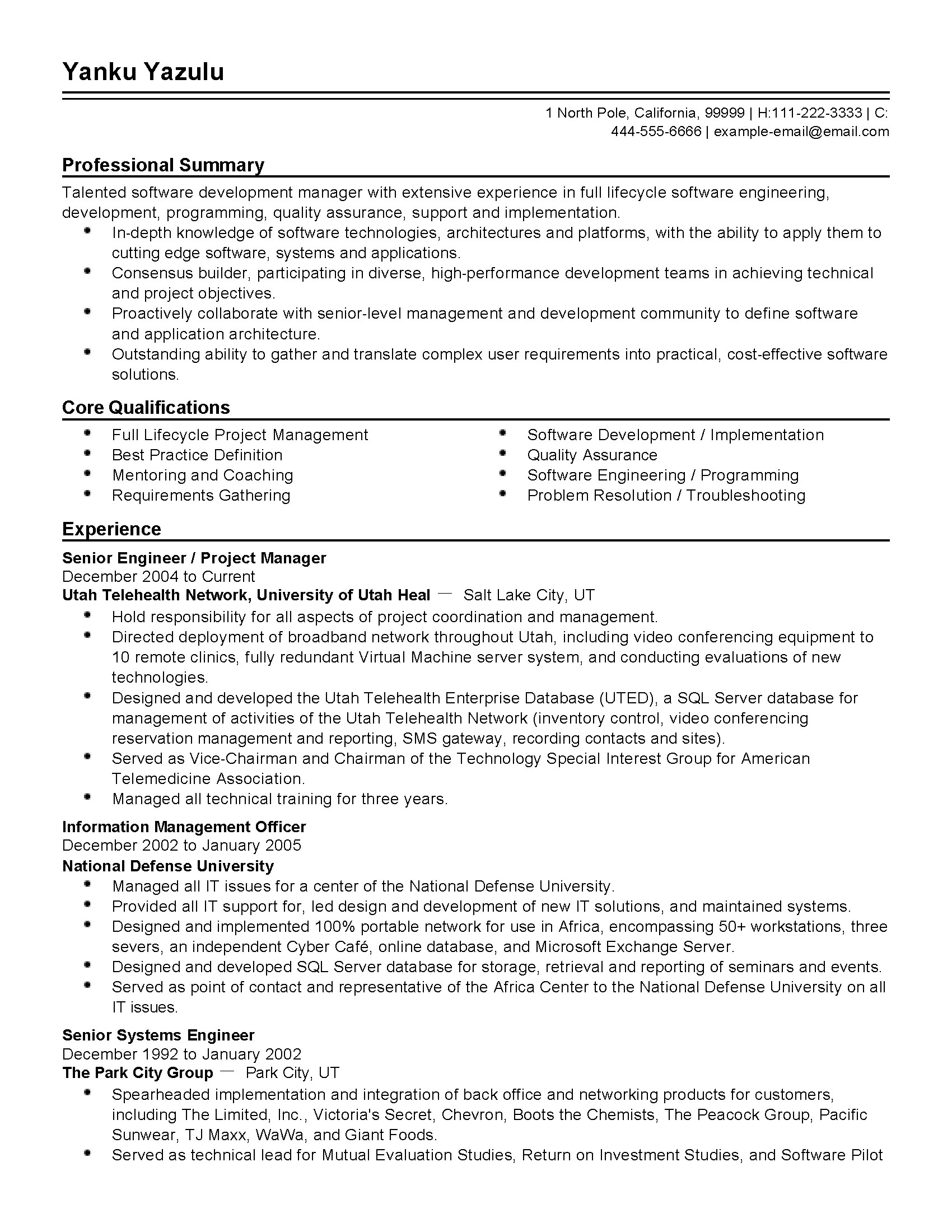 Professional Examples Of Resumes Professional Senior Engineer Templates To Showcase Your
