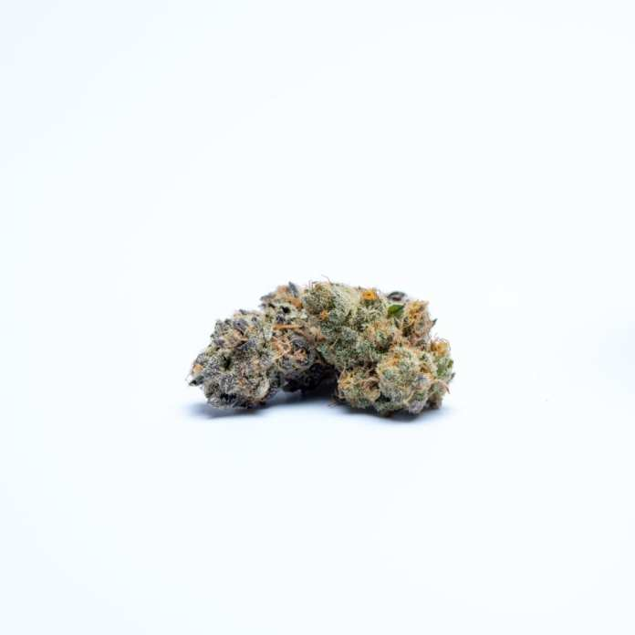 The Winners Of The High Times Cannabis Cup Oklahoma: People's Choice Edition 2020