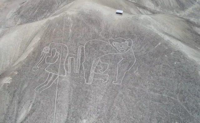 На плато Наска нові загадкові малюнки