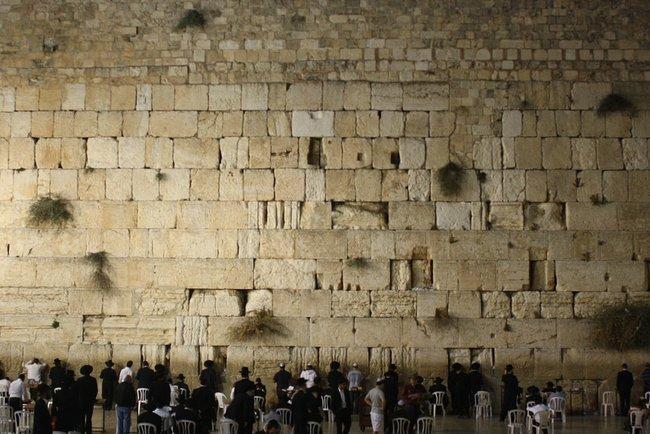 Змія на Стіні Плачу: апокаліптичне знамення для світу – відео