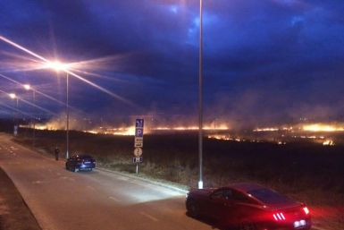 Підпали сухої трави у Львові