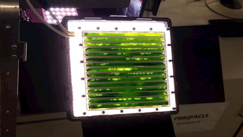 На МКС запустять біореактор, що продукуватиме кисень і харчі