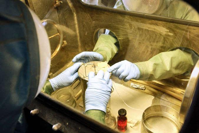 У російському центрі, де зберігається вірус Еболи, стався вибух